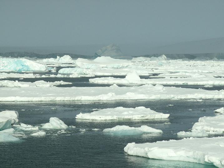 עוד קרחונים (עוד נראה הרבה...), אנטרקטיקה