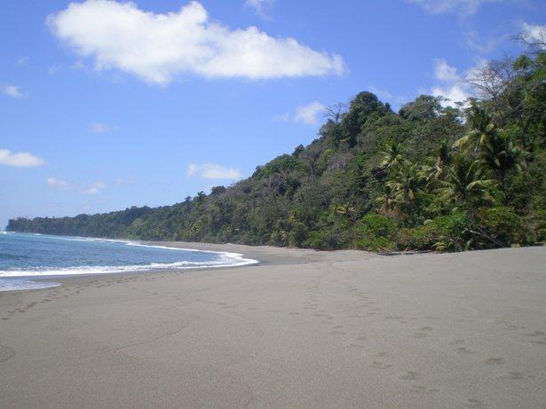 חופי הטראק