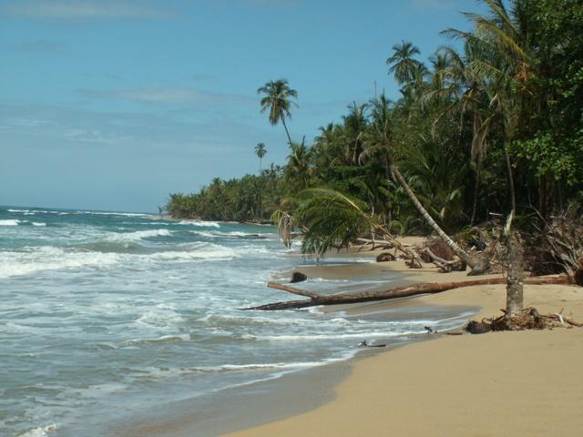 חוף קריבי אחרון לטיול