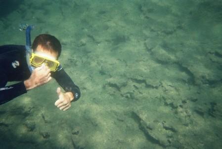 כן כן...זה אני מתחת למים שם...