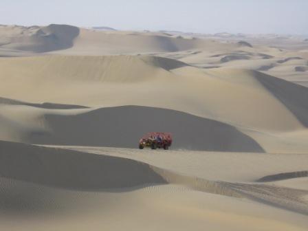 הבאגי במדבר