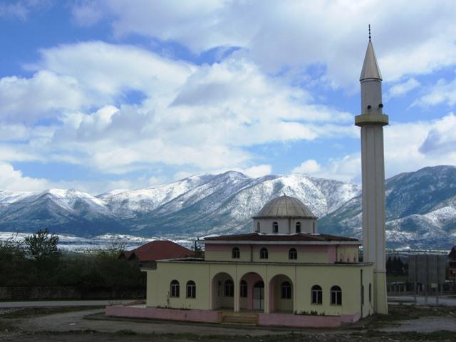 בראם צורי, אלבניה