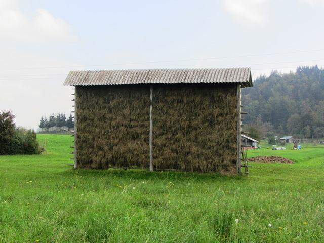 מייבשים חציר, טריגלאב, סלובניה