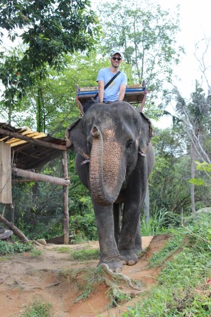 טיול פילים, קופנגהן, תאילנד